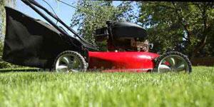 gas lawn mower engine