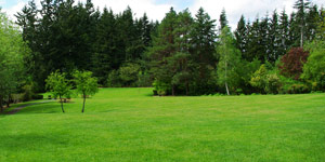 lawn mower property size