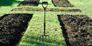 planning a practical garden