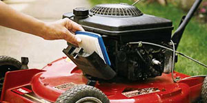 best lawn mower power source