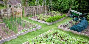 planning the organic garden