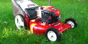 gas lawn mower grass management