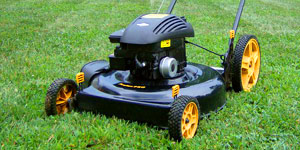 gas lawn mower engine
