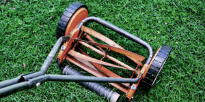 best reel mower other considerations