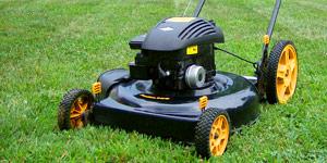 lawn mower type