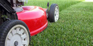 lawn mower special features