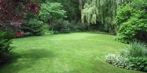 lawn mower yard size