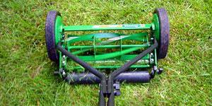 reel mower best choice
