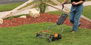 reel mower reviews